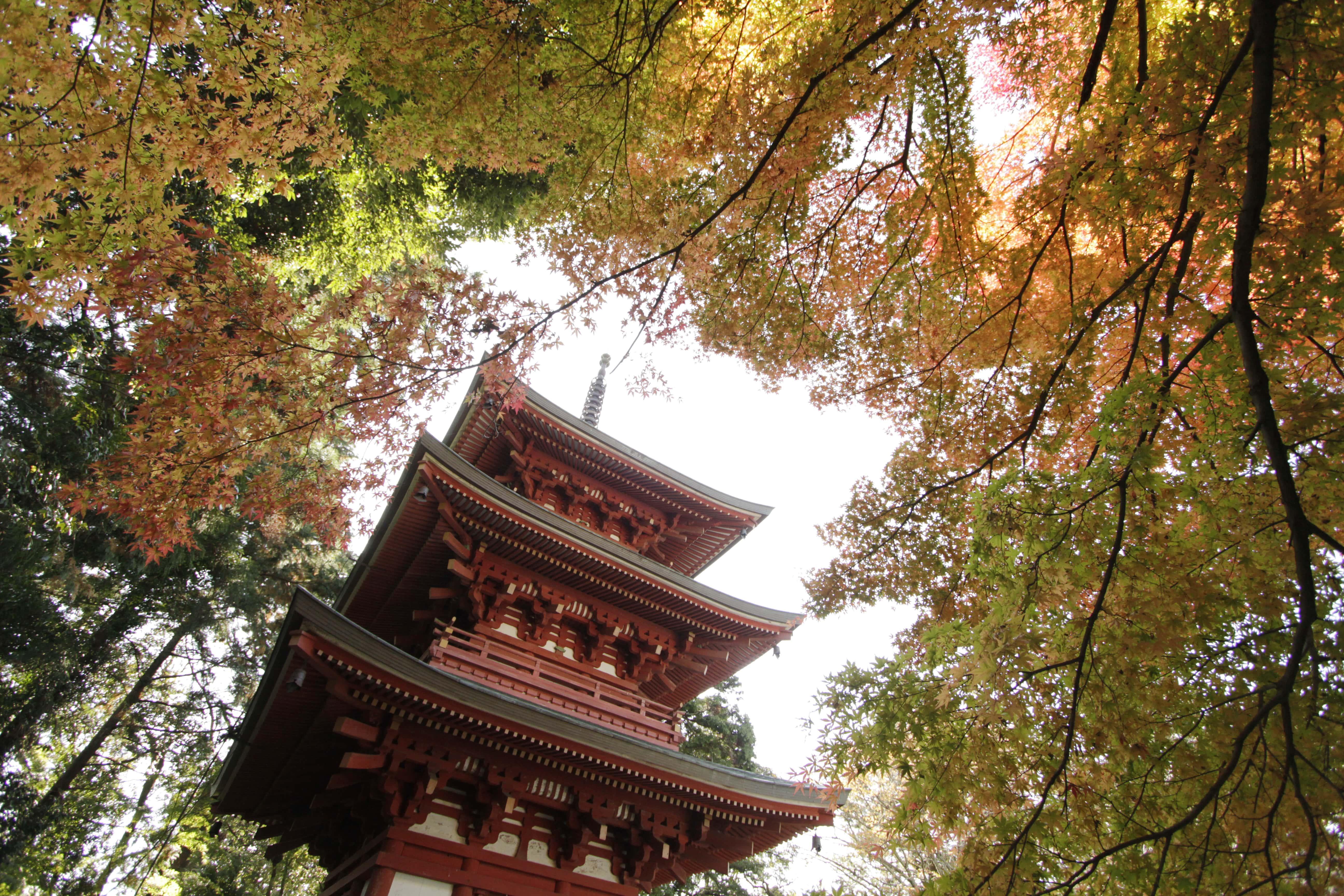 醫王山油山寺