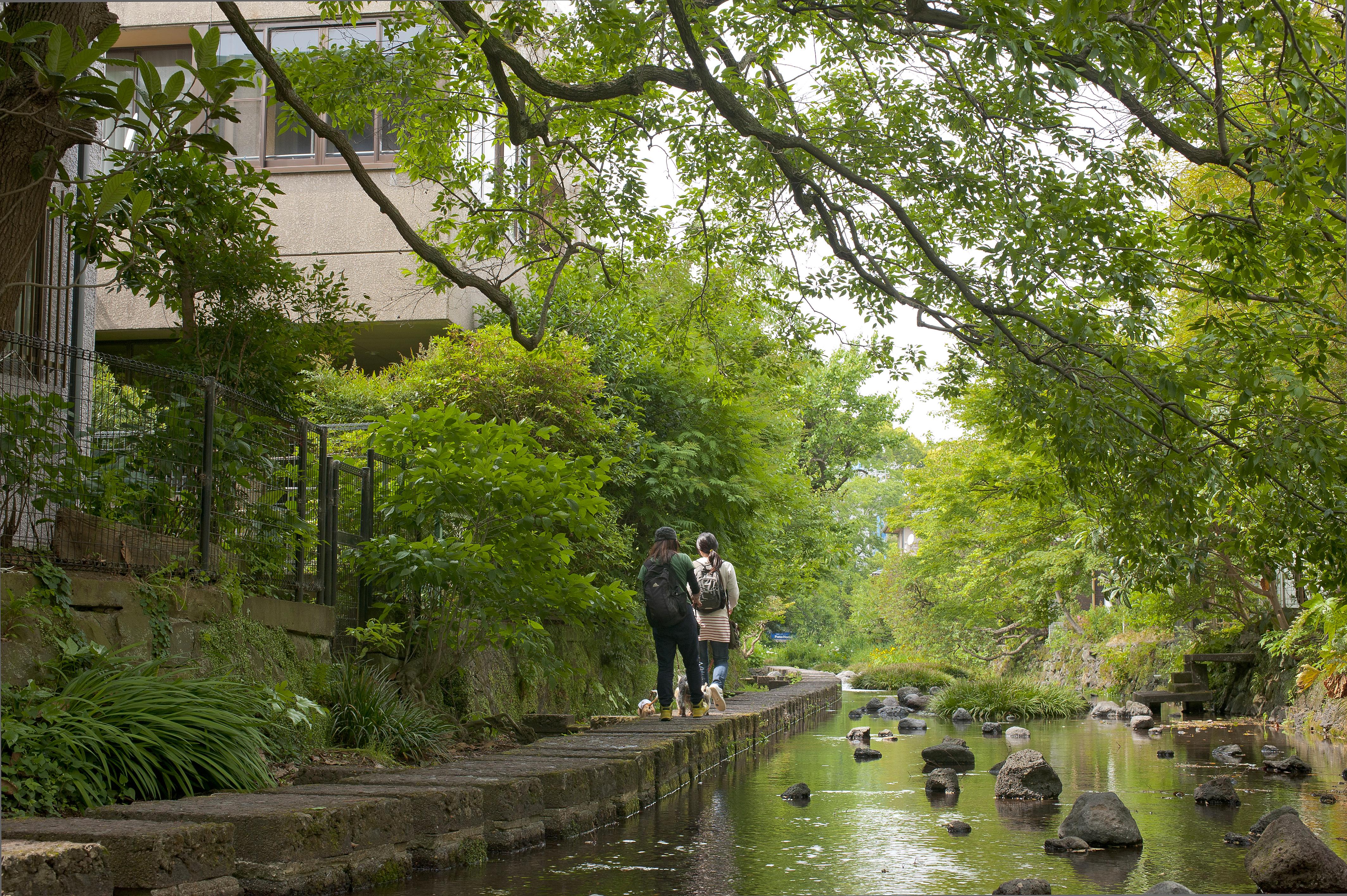 Sông genbei